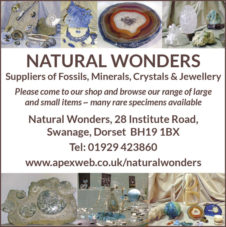 NATURAL WONDERS  Suppliers of Fossils, Minerals, Crystals & Jewellery Please come to our shop and browse our range of large and small items ~ many rare specimens available Natural Wonders, 28 Institute Road, Swanage, Dorset  BH19 1BX Tel: 01929 423860  www.apexweb.co.uk/naturalwonders