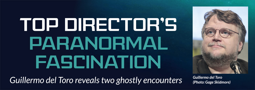 Top director's 