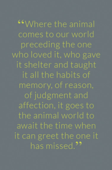 """Where the animal comes to our world preceding the one who loved it, who gave it shelter and taught it all the habits of memory, of reason, of judgment and affection, it goes to the animal world to await the time when it can greet the one it has missed."""