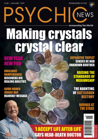 January 2019 (Issue No 4171)